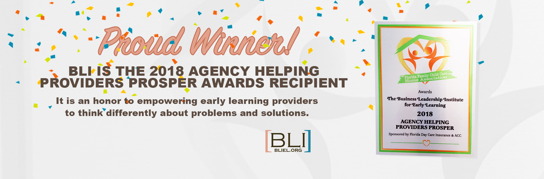 BLI is the 2018 Agency Helping Providers Prosper Awards Recipient